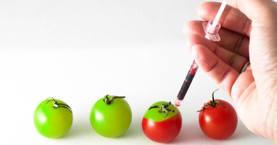 tomatoeswhoa.jpg