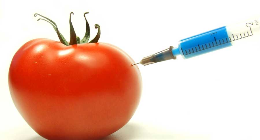 GMOsMIX.jpg