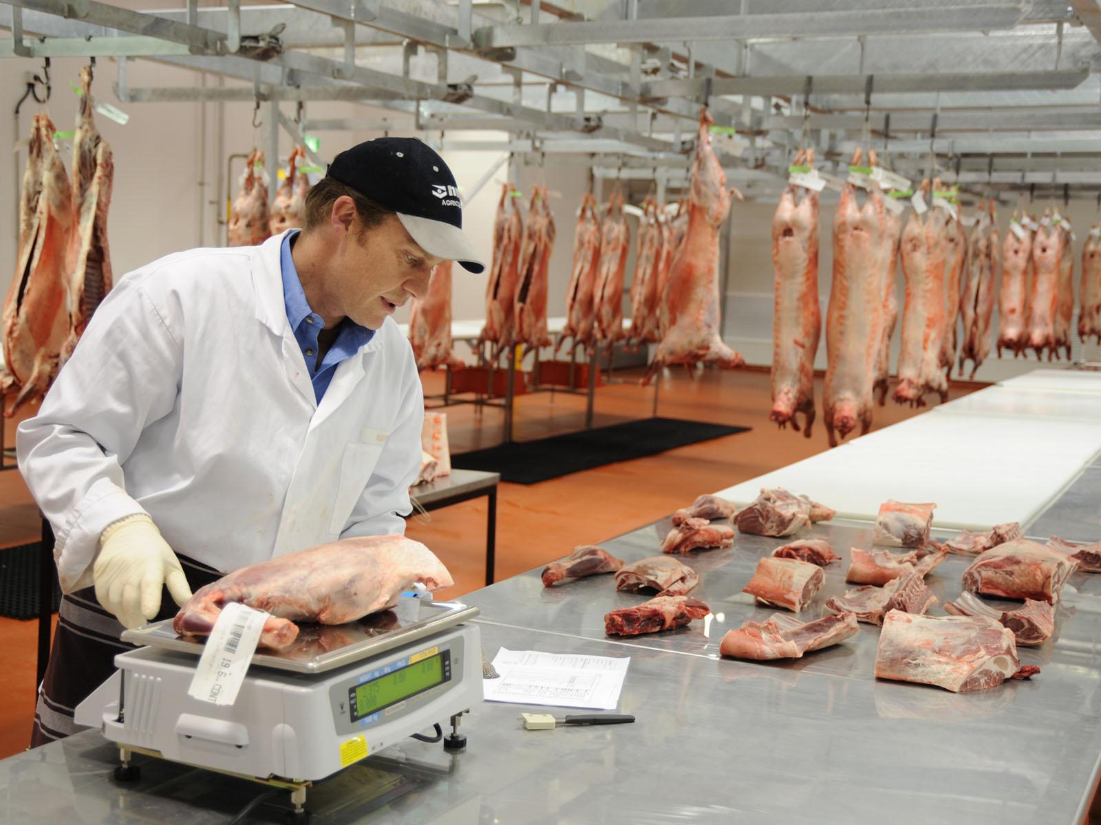meat-processing-1.jpg