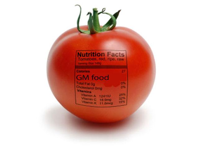 gmo-food1.jpeg