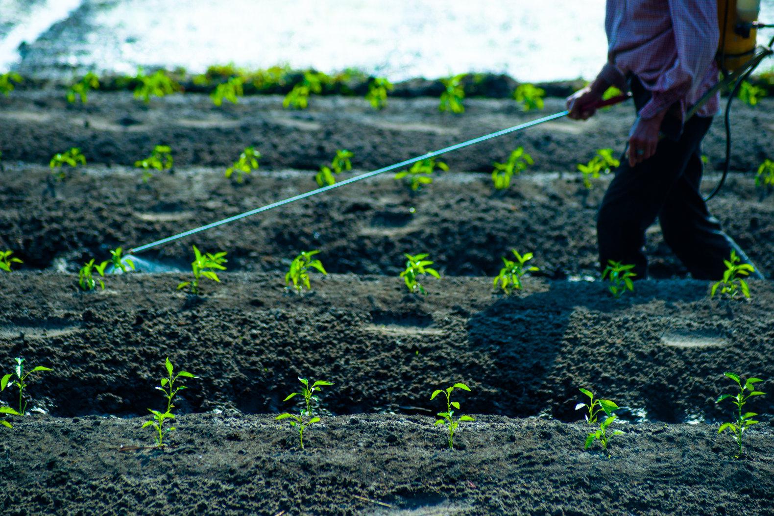 spraying-pesticide-on-farm-crops.jpg