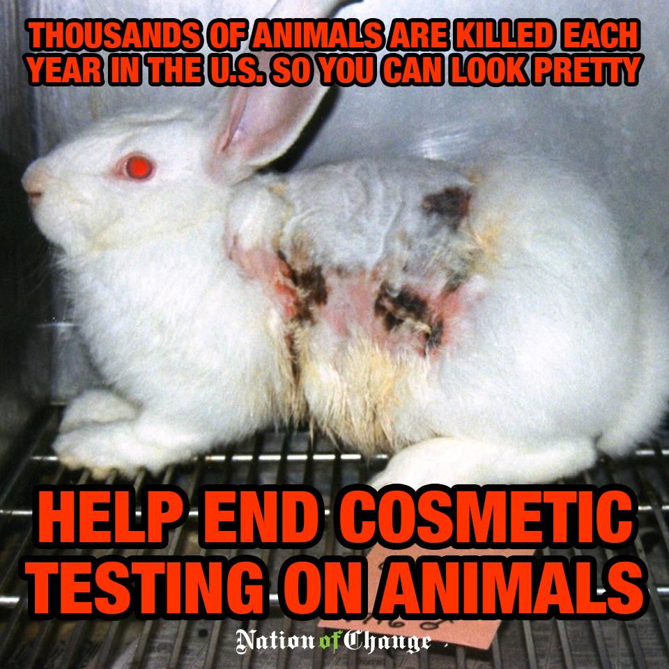 cosmeticcruelty.png