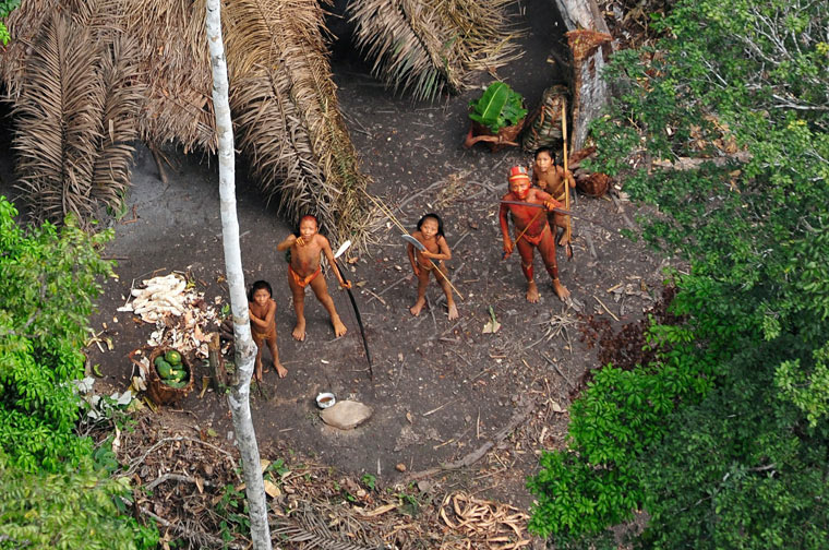 IndigenousLandAmazon.jpg