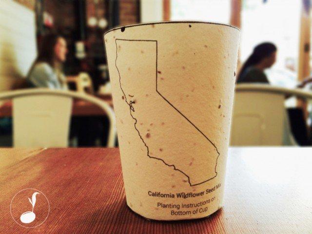 BiodegradableCoffeeCups.jpg