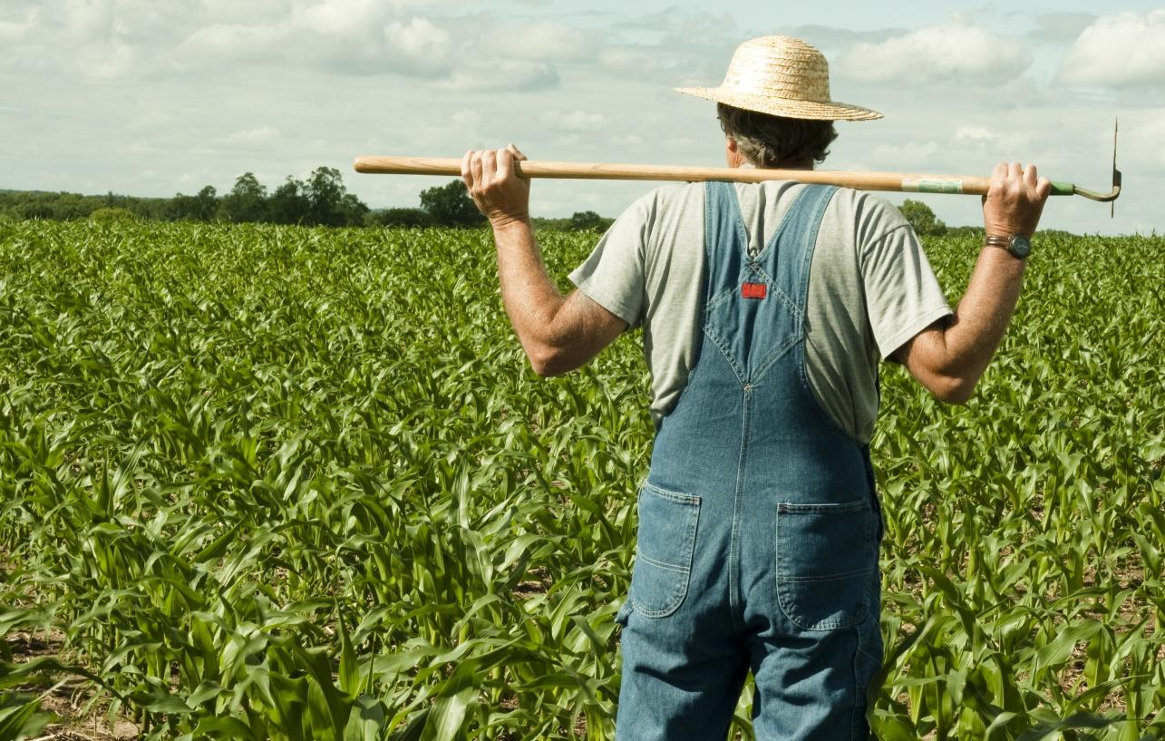 FarmersSoil.jpg