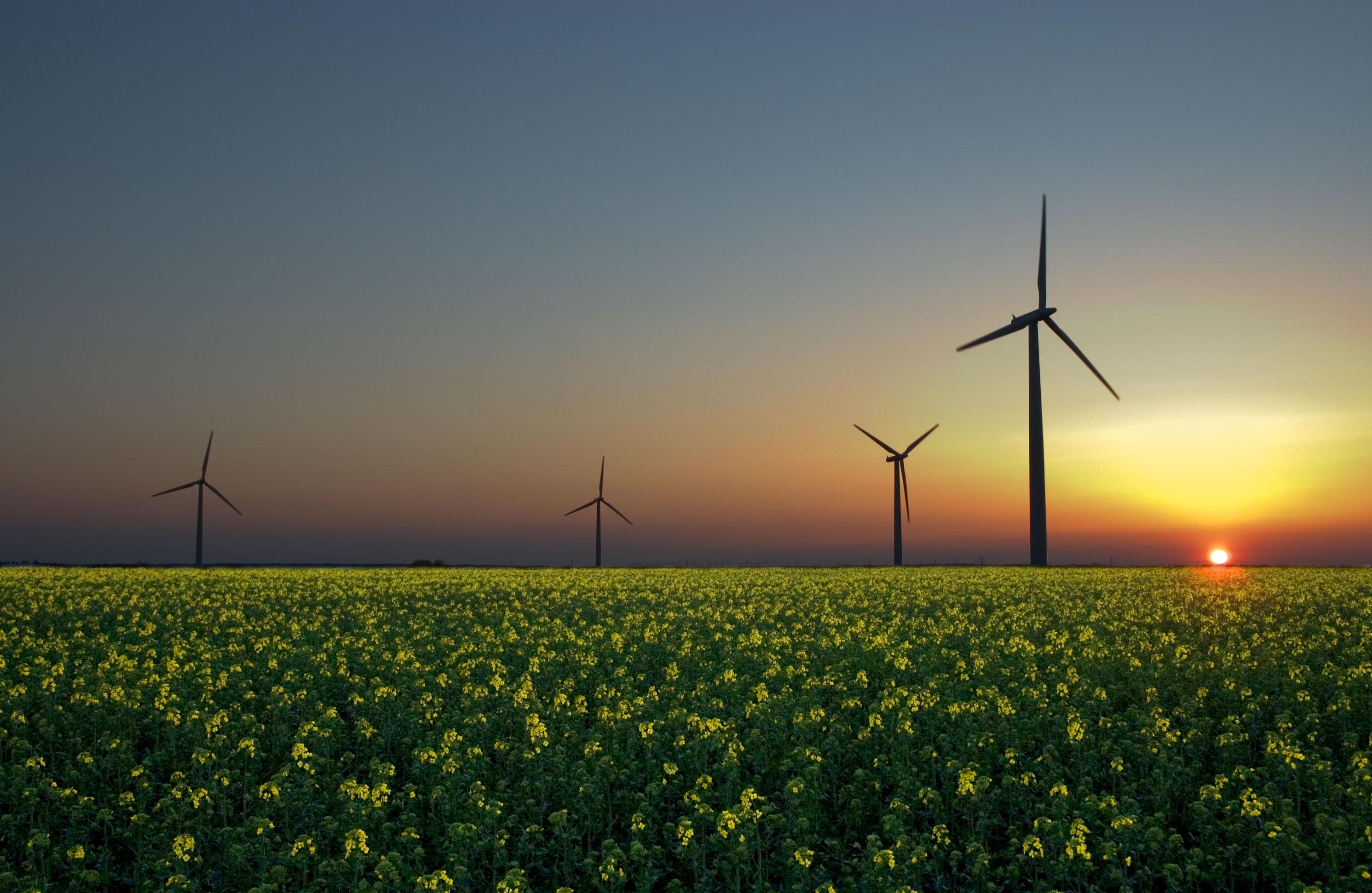 RenewableEnergyEurope.jpg