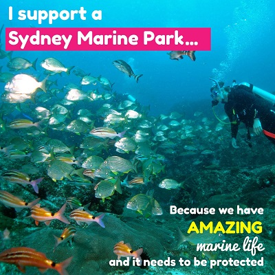 I_support_a_sydney_marine_park_general_small_400x400.jpg