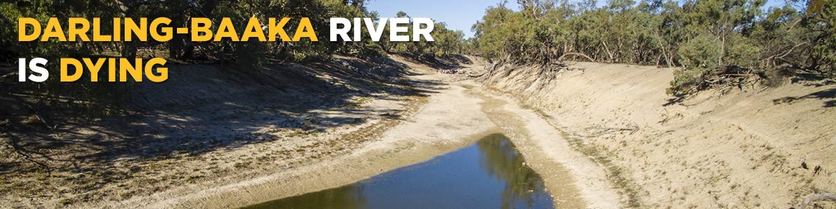 Darling-Baaka River is Dying