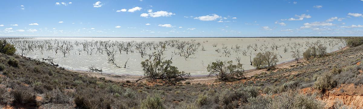 Lake Pamamaroo panorama