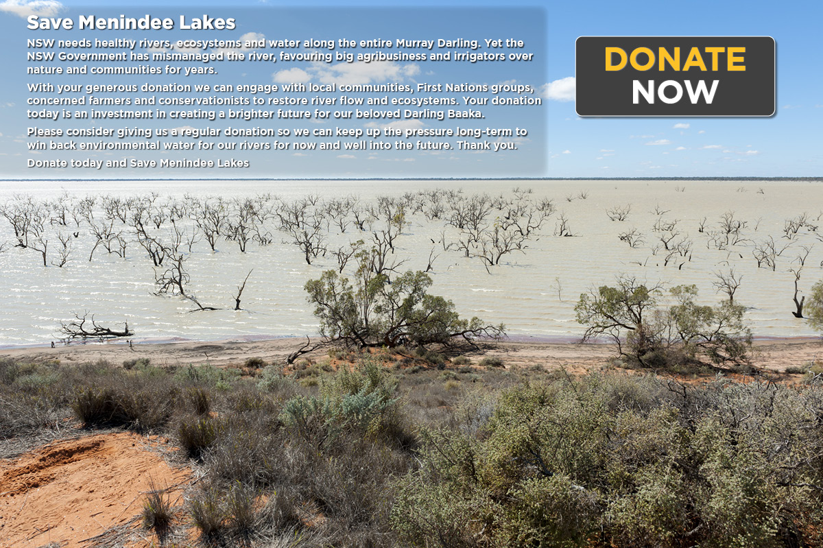 Donate to save the Menindee Lakes