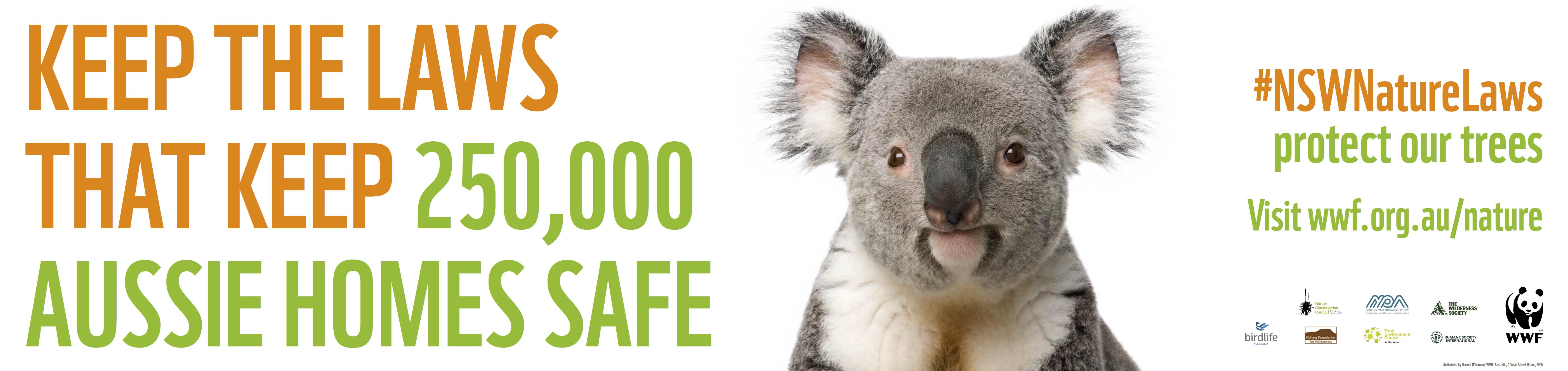 koala_billboard.jpg