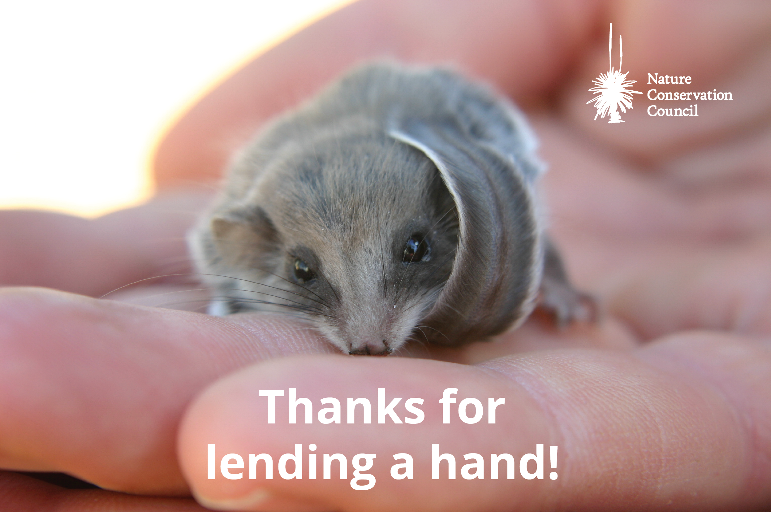 Thanks for lending a hand!
