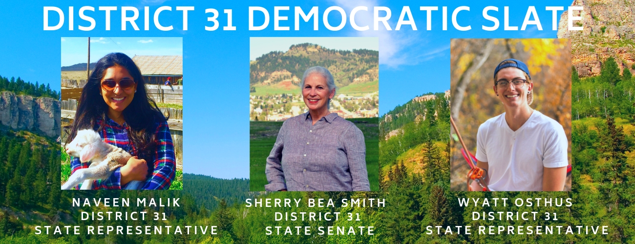 The Democratic Slate - District 31