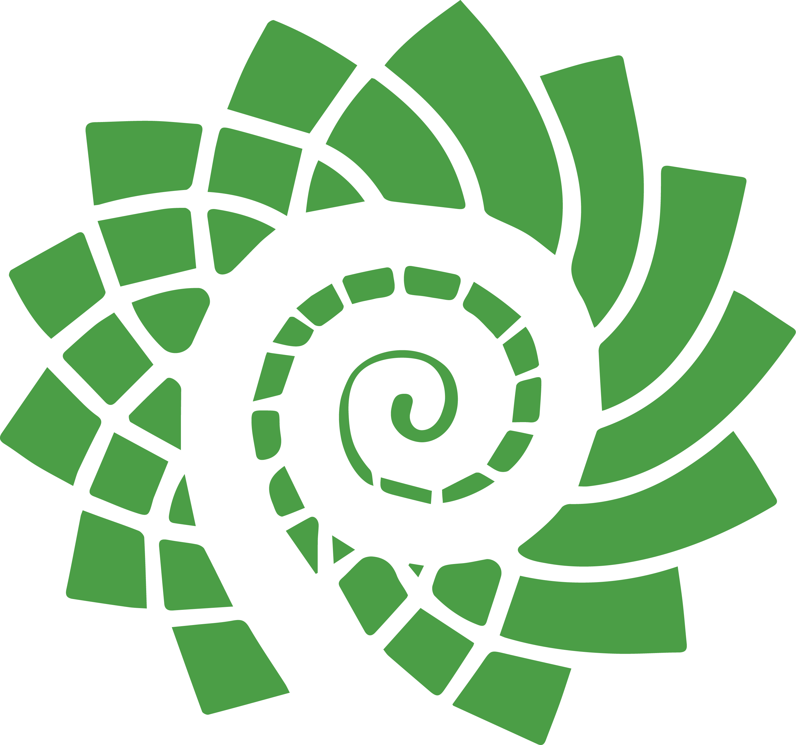 Parti Vert NB Green Party