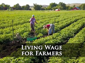 Click for Living Wage for Farmers
