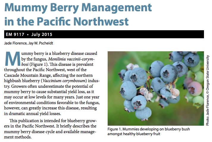 Mummy Berry Management Video