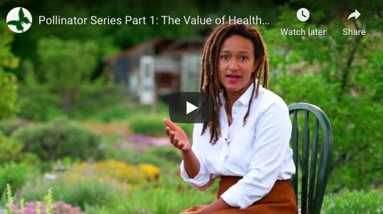 Healthy Habitat Pollinator Video Series