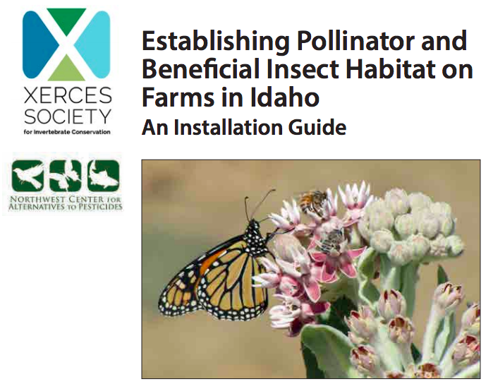 Pollinator & Beneficial Insect Habitat Guide