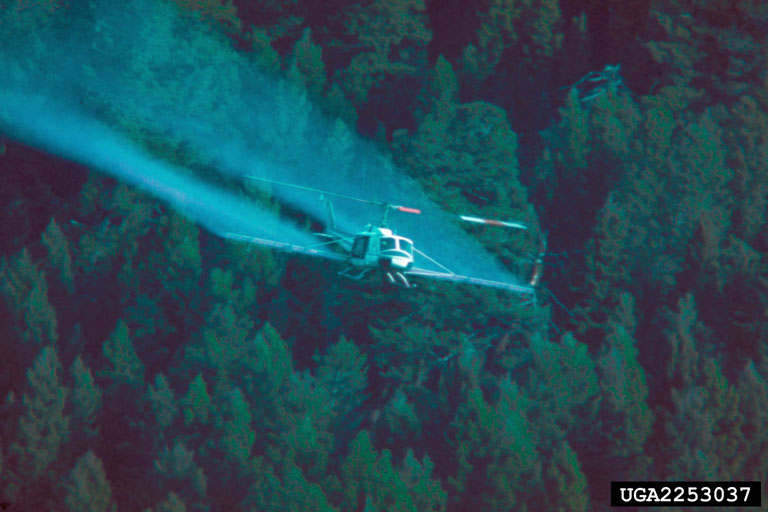 Airplane spraying pesticides over forest