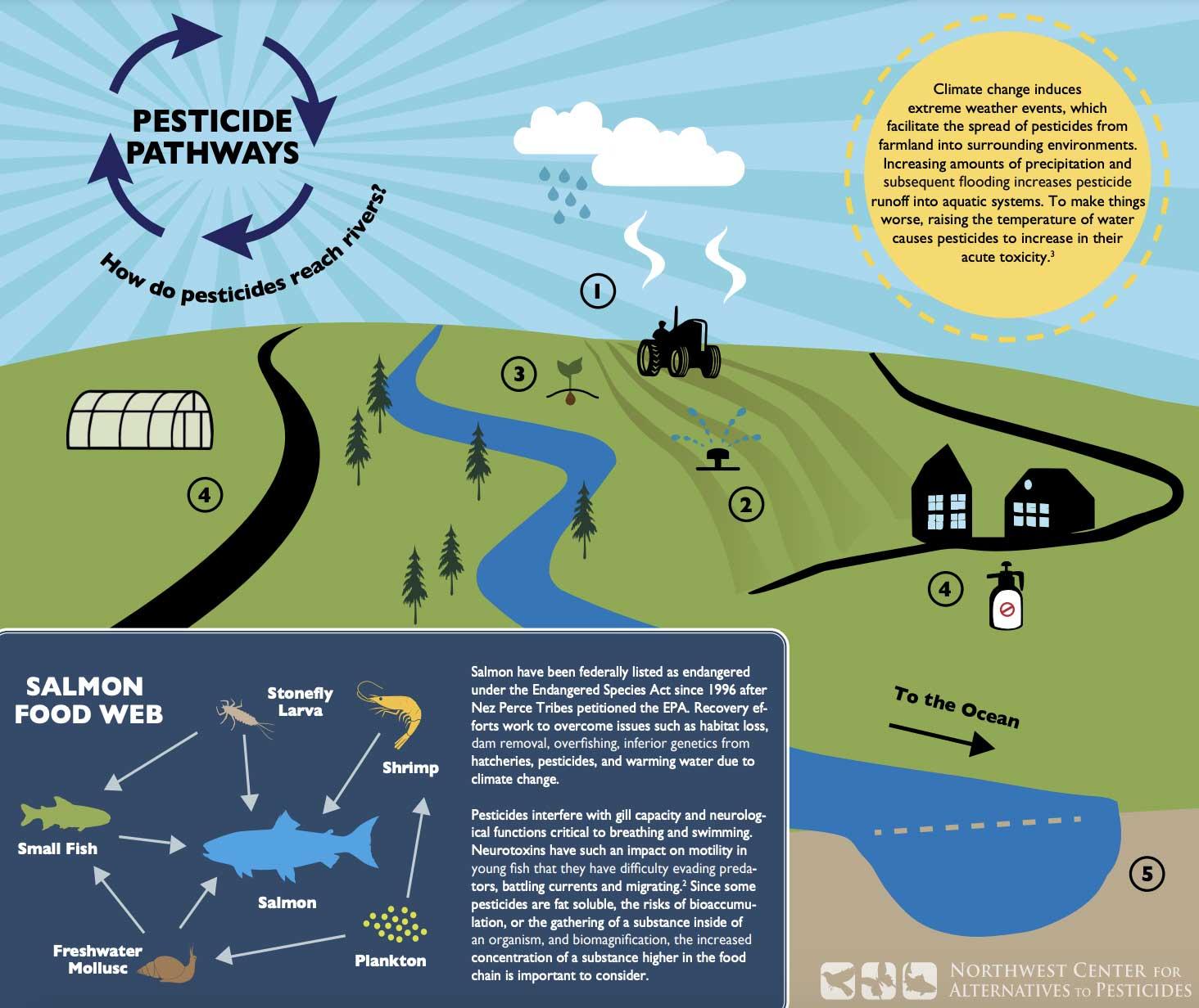 Pesticide pathways showing how pesticides reach rivers