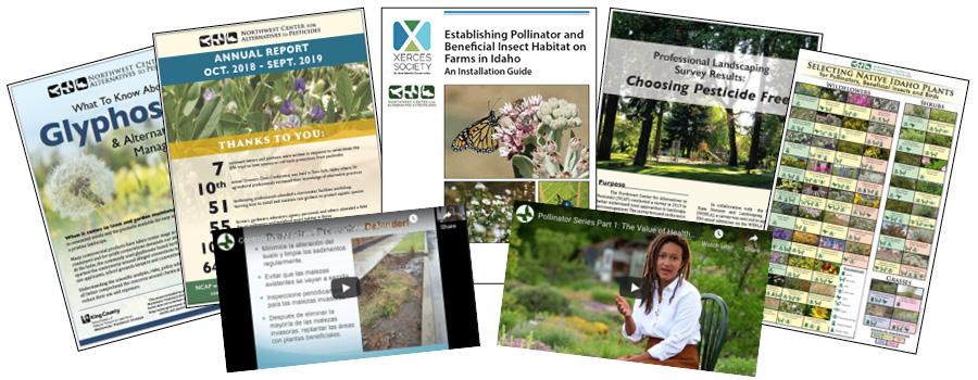 Collage of various NCAP resources- videos, factsheets, guides, etc.