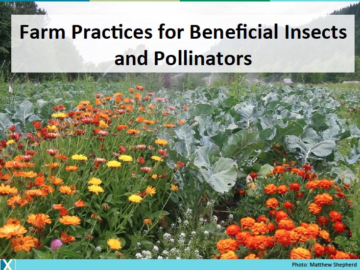 4._Farm_Practices.png