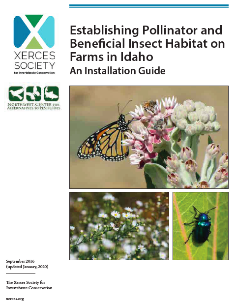 Establishing Pollinator and Beneficial Insect Habitat on Farms in Idaho