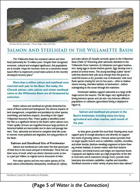 Page 5 of Water is the Connection publication: Salmon and Steelhead in the Willamette Basin