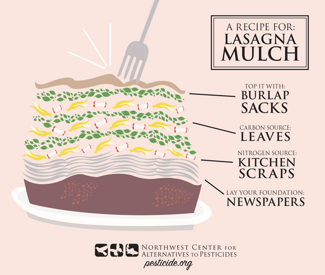 LasagnaMulchFinal.jpg