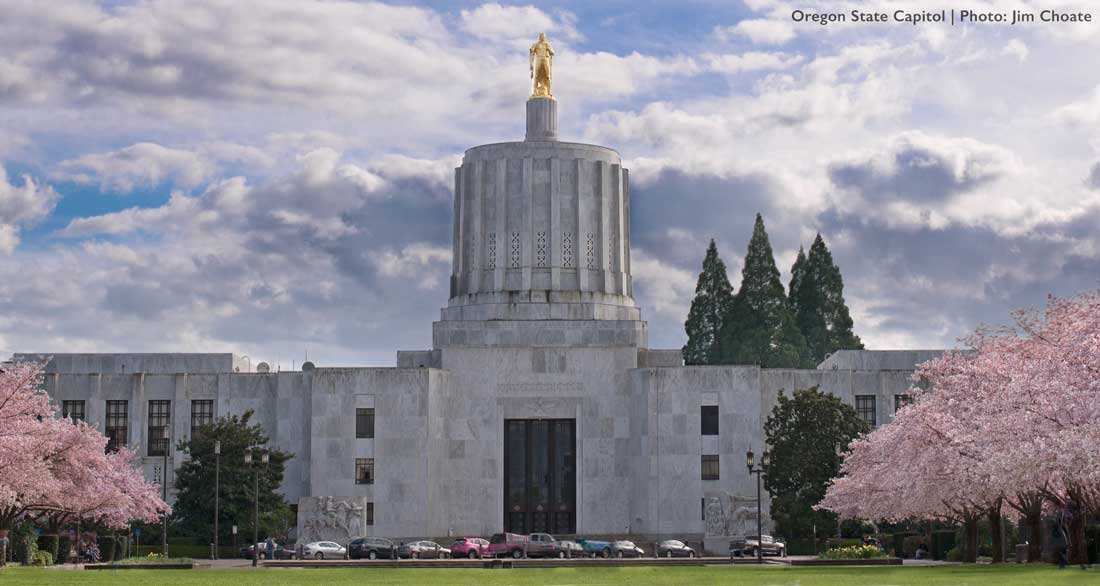 Oregon capitol building with flowering trees in front