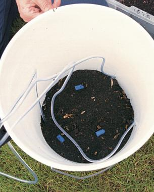 composttea_bucket.jpg