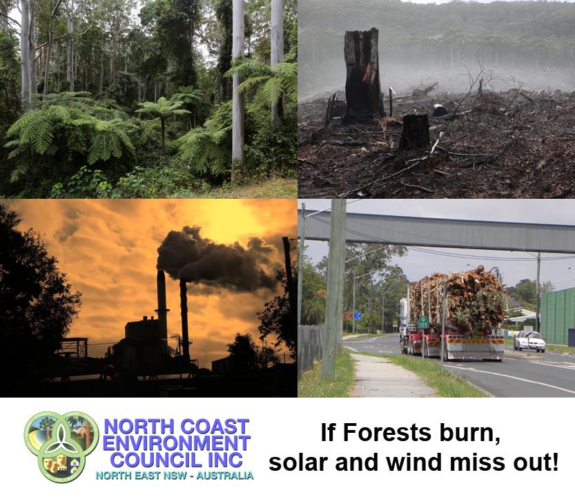 NCEC_Forests_RET_Solar_Wind.jpg