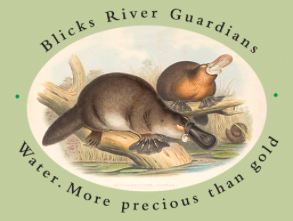 North_Coast_Environment_Council_Blicks_River_Guardians.jpg