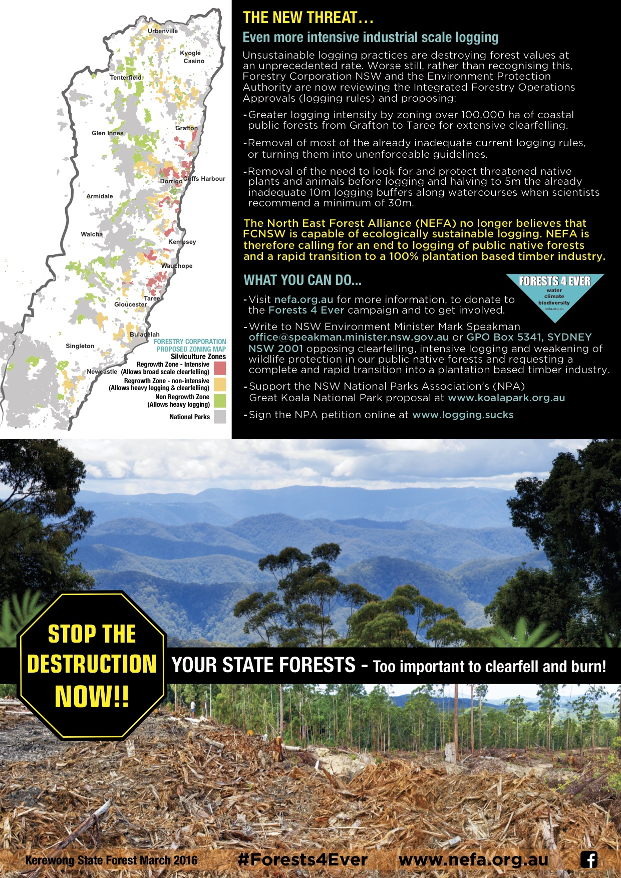 Forests4ever leaflet - North East Forest Alliance