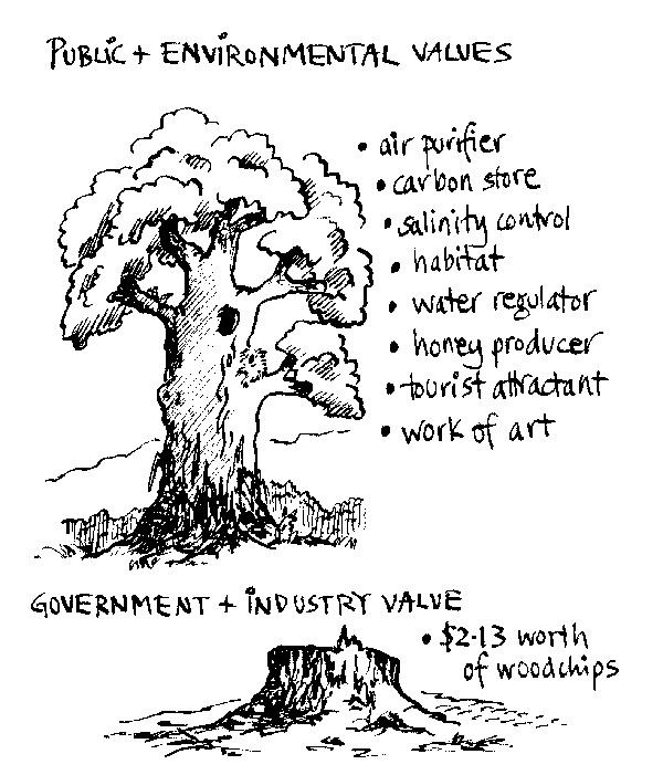 tree-values.jpg