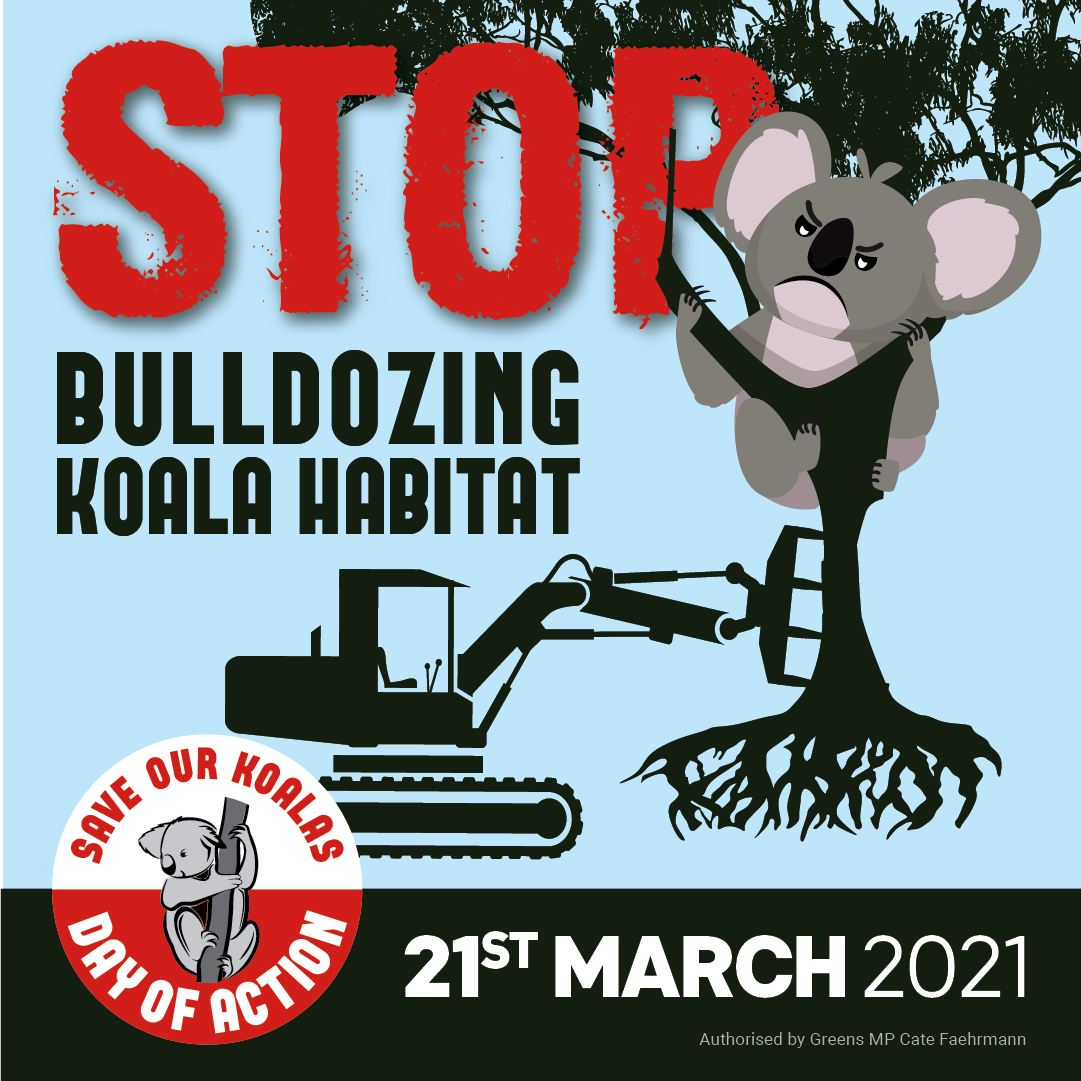 #SaveOurKoalas Statewide Day of Action