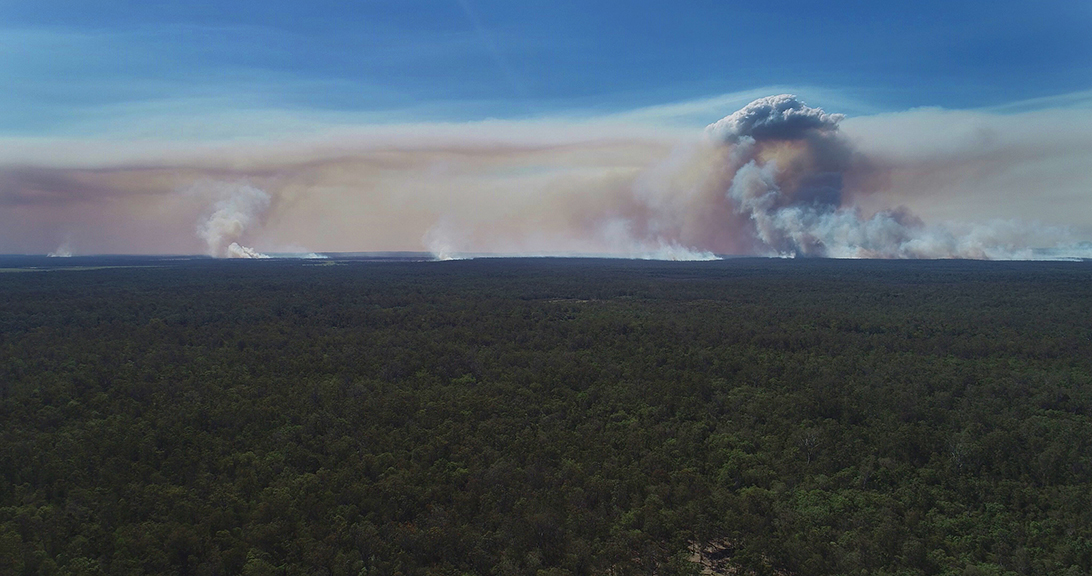 NEFA_Australian_Bushfires_Braemar_0015.jpg