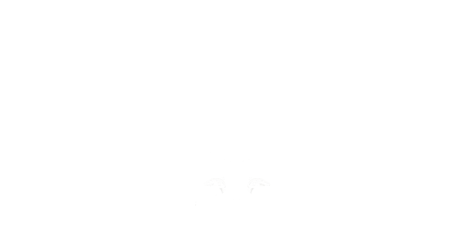 North Carolina Republican Sportsmen