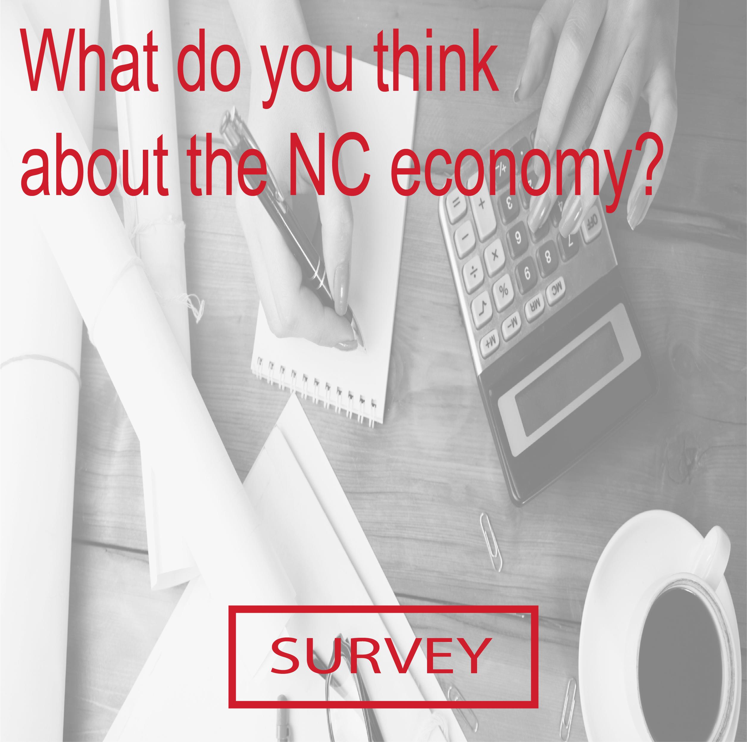 nc_economy_survery.jpg
