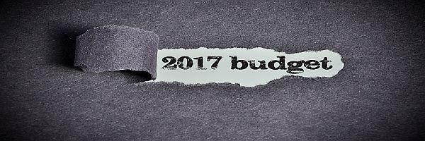 2017_budget.jpg