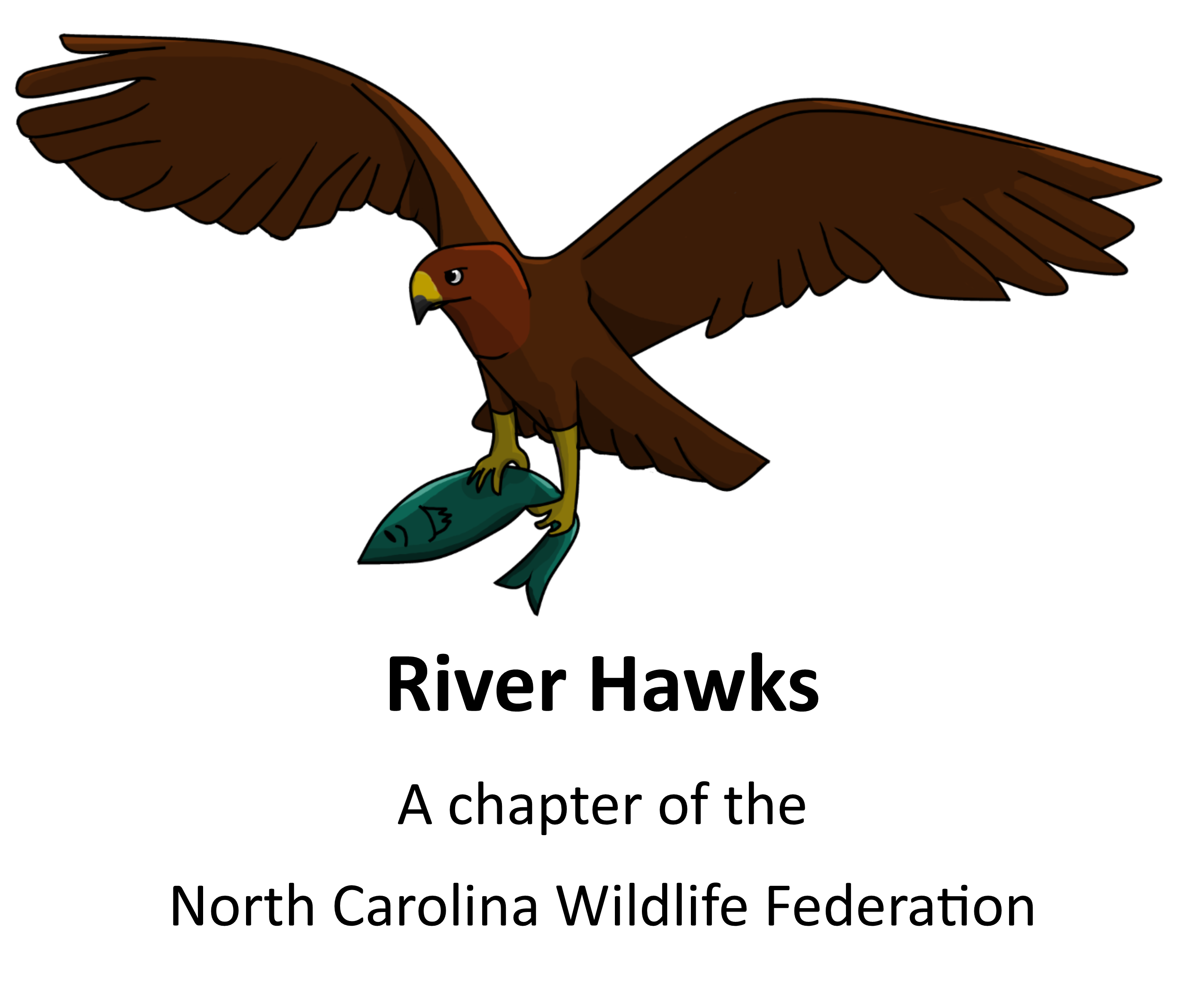 River__Hawks_logo2.png