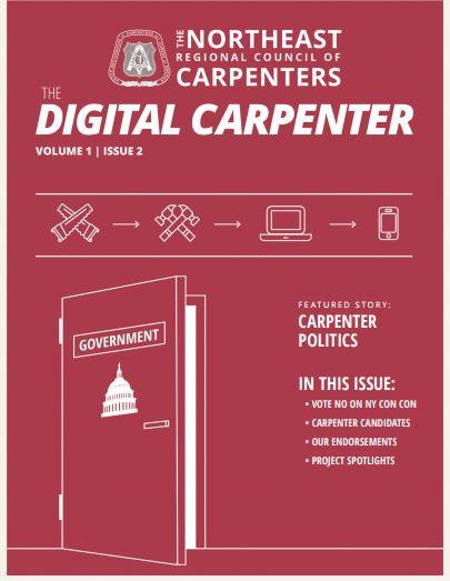 Digi_carp_cover_2.JPG