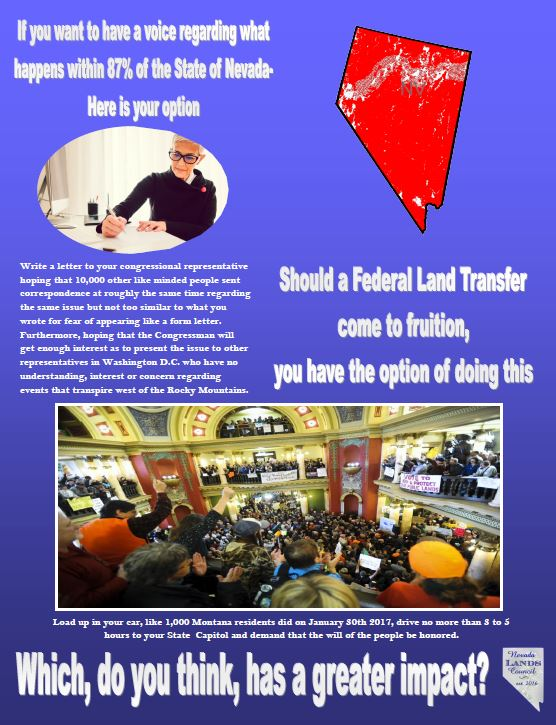 ProtestFedvsState.JPG