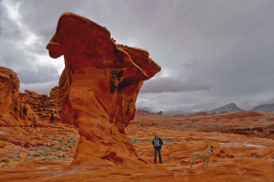 photo: Shaped sandstone hobgobblin (c) Brian Beffort