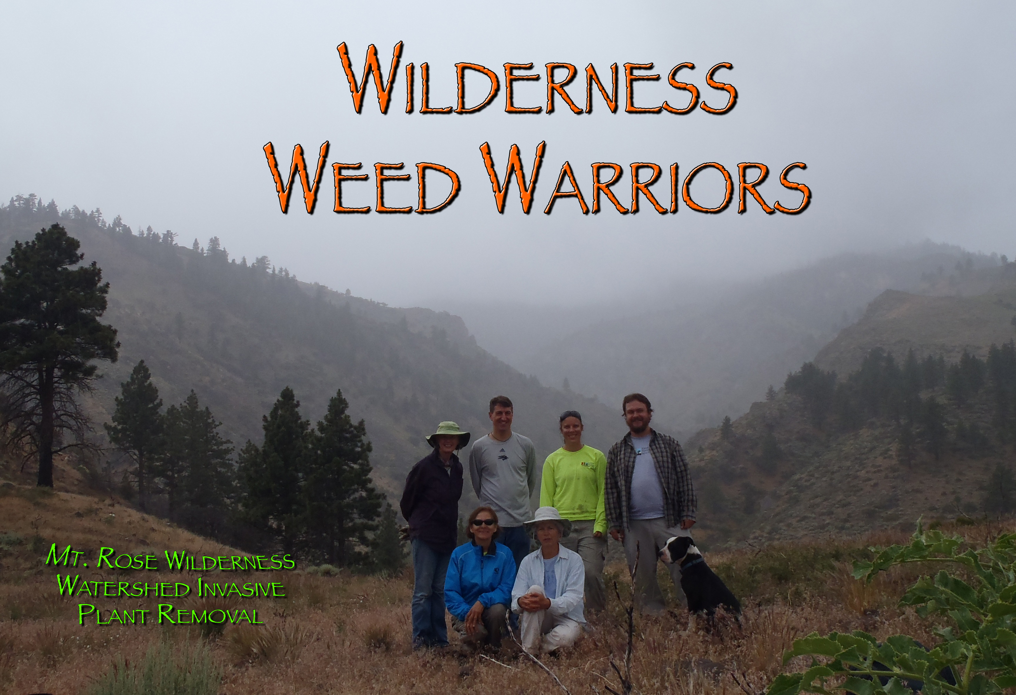 06-25-2013_mount_rose_weed4_volunteers1_LB.jpg