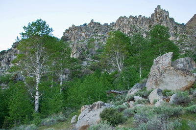 photo_disasterpeak_aspens___rock-ridge_bbeffort_150d_400x266.jpg