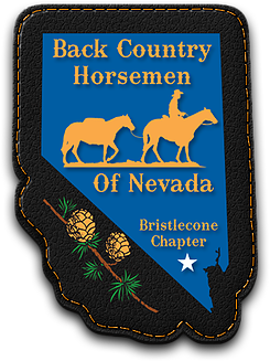 BCH_Bristlecone_Logo.png