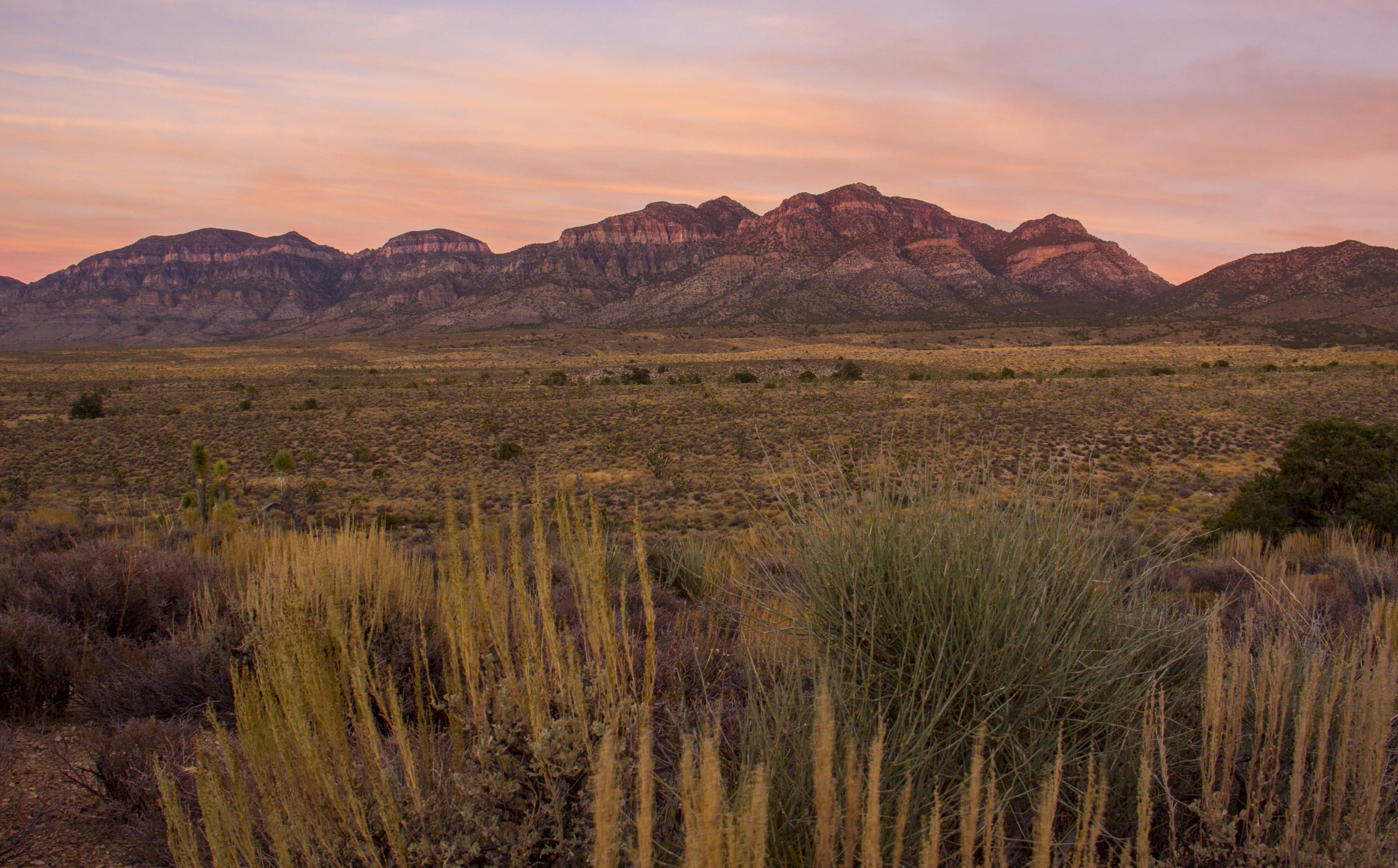 DNWR_sunset.jpg