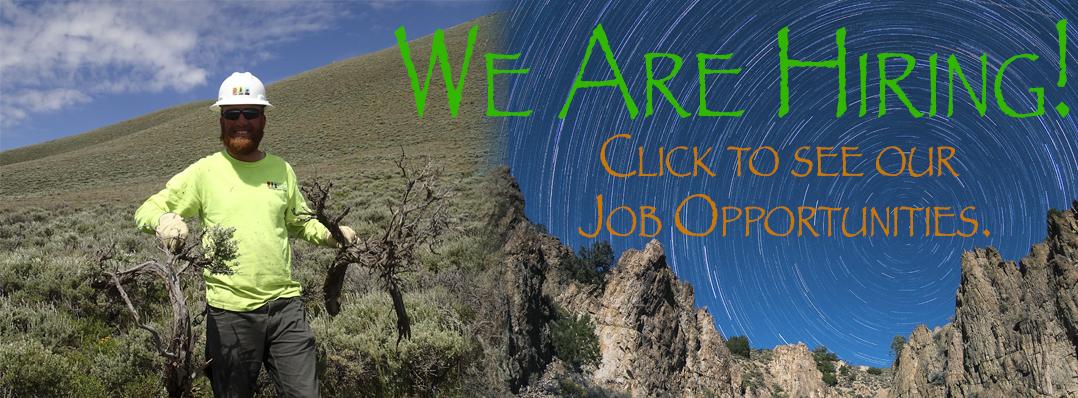 2017_job_posting_banner.png