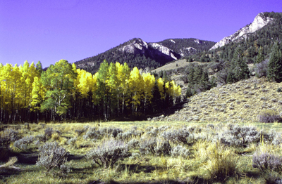 photo_highland-ridge_aspen_pdronkers_400.jpg
